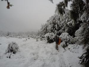 Rodeados de nieve