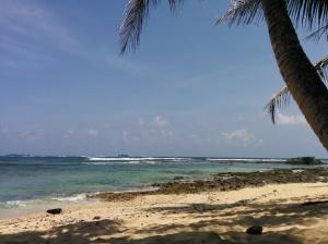 Primer día de surf