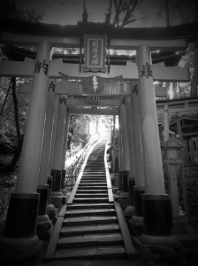 Escaleras hacia el cielo